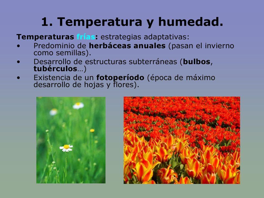 1. Temperatura y humedad. Temperaturas frías: estrategias adaptativas: