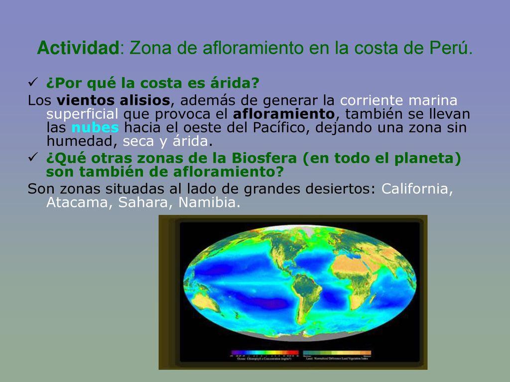 Actividad: Zona de afloramiento en la costa de Perú.