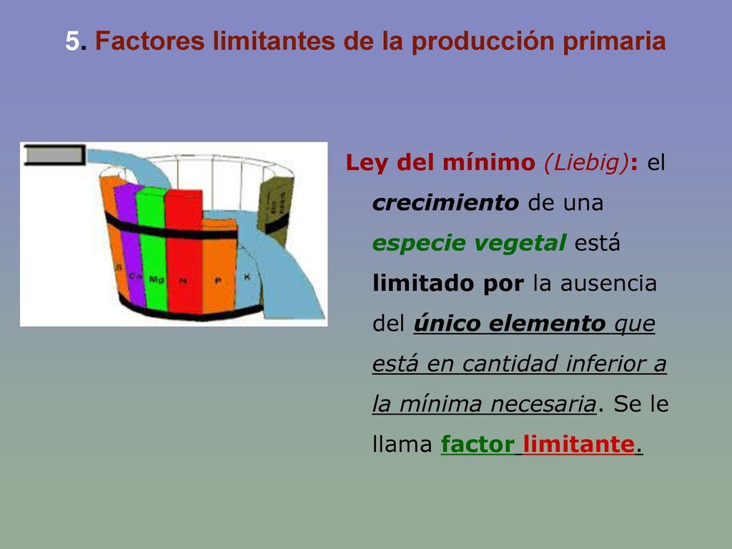 5. Factores limitantes de la producción primaria