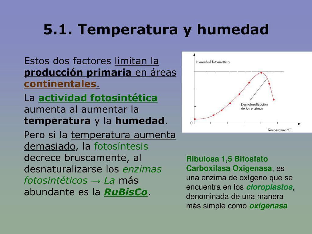 5.1. Temperatura y humedad Estos dos factores limitan la producción primaria en áreas continentales.
