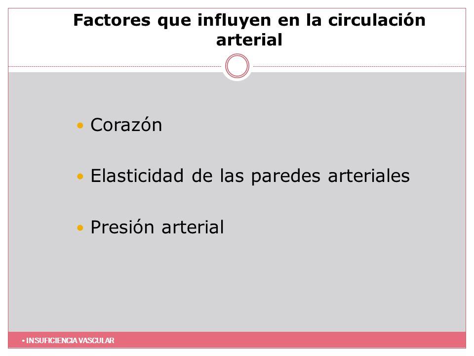 Factores que influyen en la circulación arterial