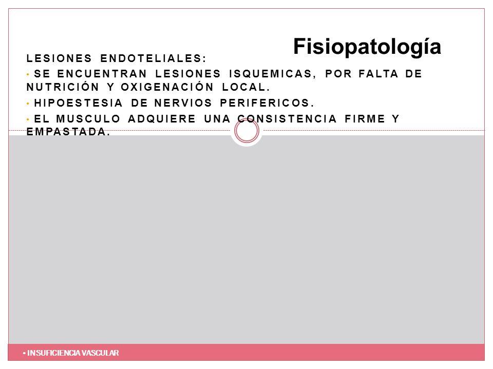 Fisiopatología Lesiones endoteliales: