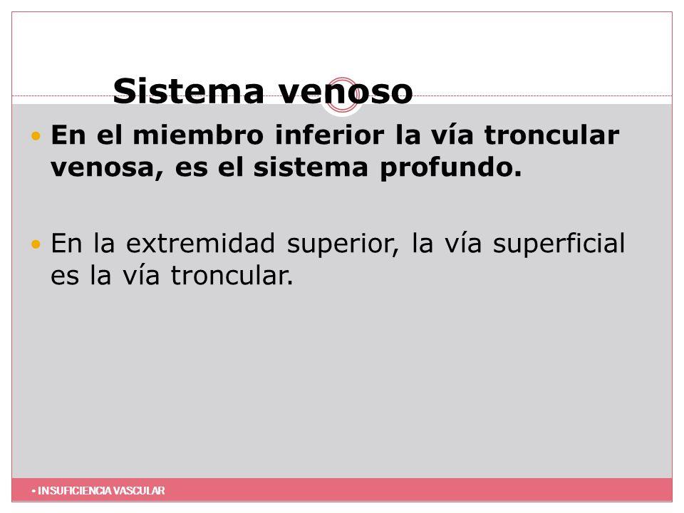 Sistema venoso En el miembro inferior la vía troncular venosa, es el sistema profundo.