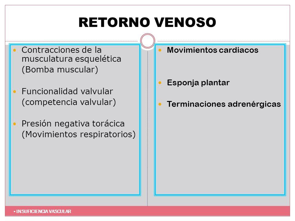 RETORNO VENOSO Contracciones de la musculatura esquelética