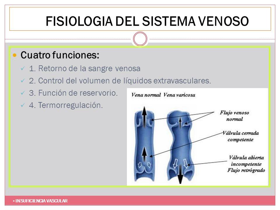 FISIOLOGIA DEL SISTEMA VENOSO