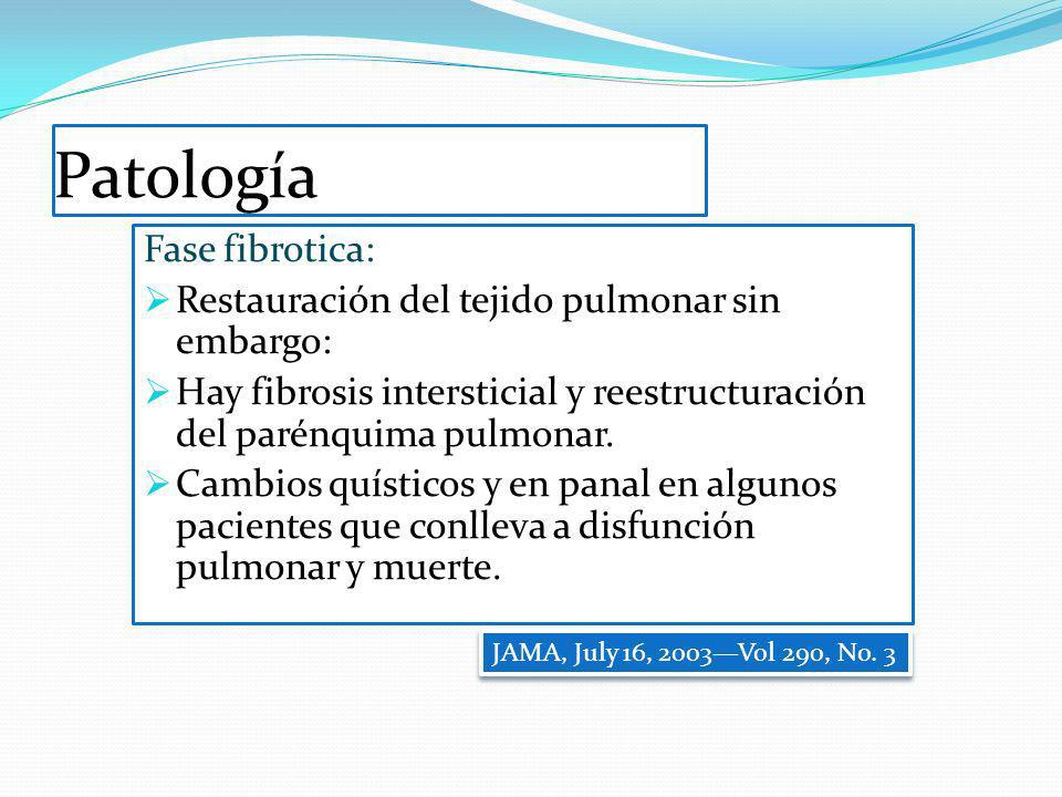 Patología Fase fibrotica: