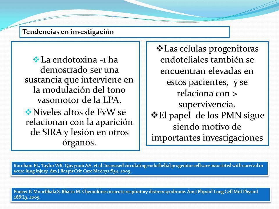 El papel de los PMN sigue siendo motivo de importantes investigaciones
