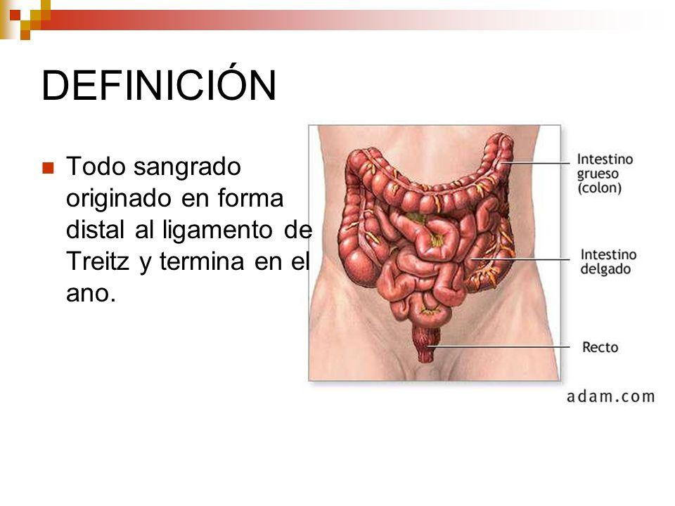DEFINICIÓN Todo sangrado originado en forma distal al ligamento de Treitz y termina en el ano.