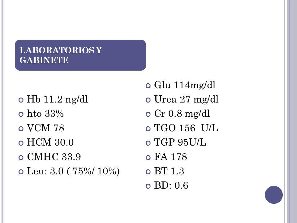 Hb 11.2 ng/dl hto 33% VCM 78 HCM 30.0 CMHC 33.9 Leu: 3.0 ( 75%/ 10%)