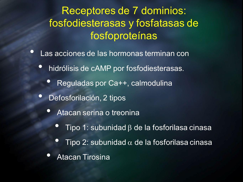 Receptores de 7 dominios: fosfodiesterasas y fosfatasas de fosfoproteínas