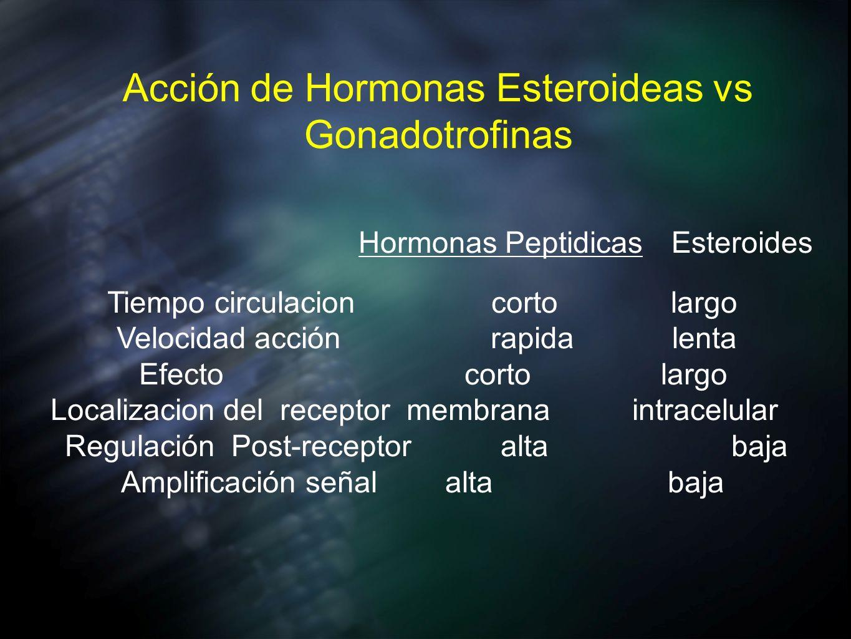 Acción de Hormonas Esteroideas vs Gonadotrofinas