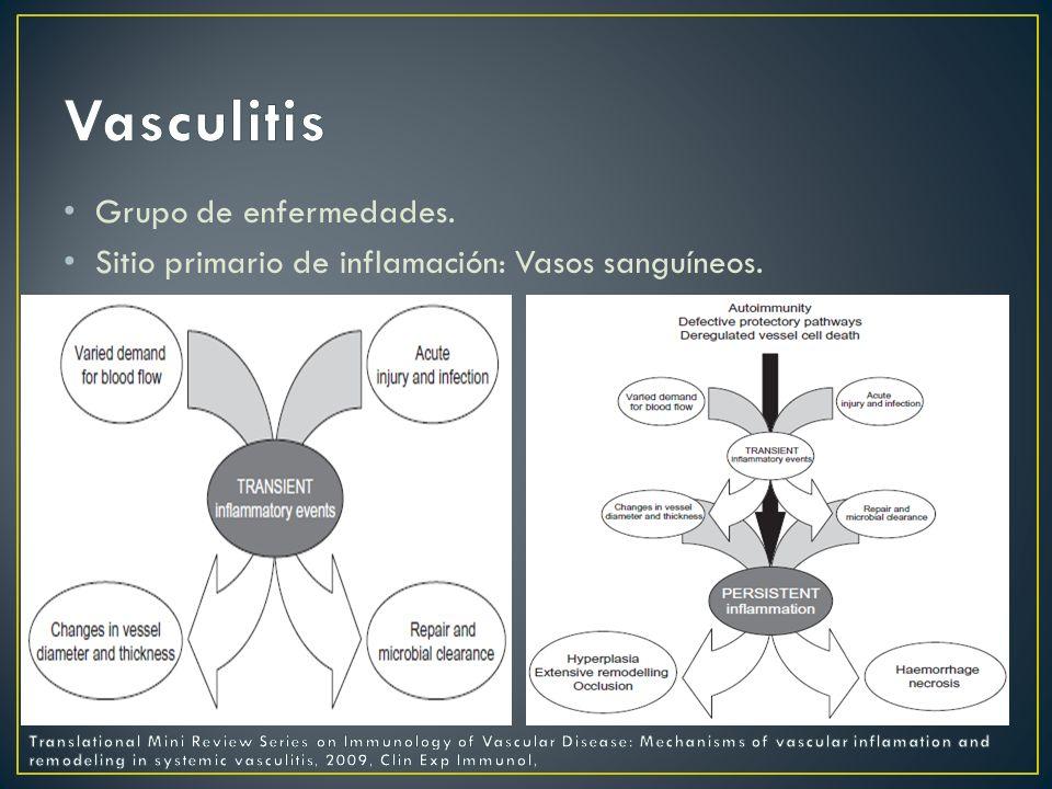 Vasculitis Grupo de enfermedades.