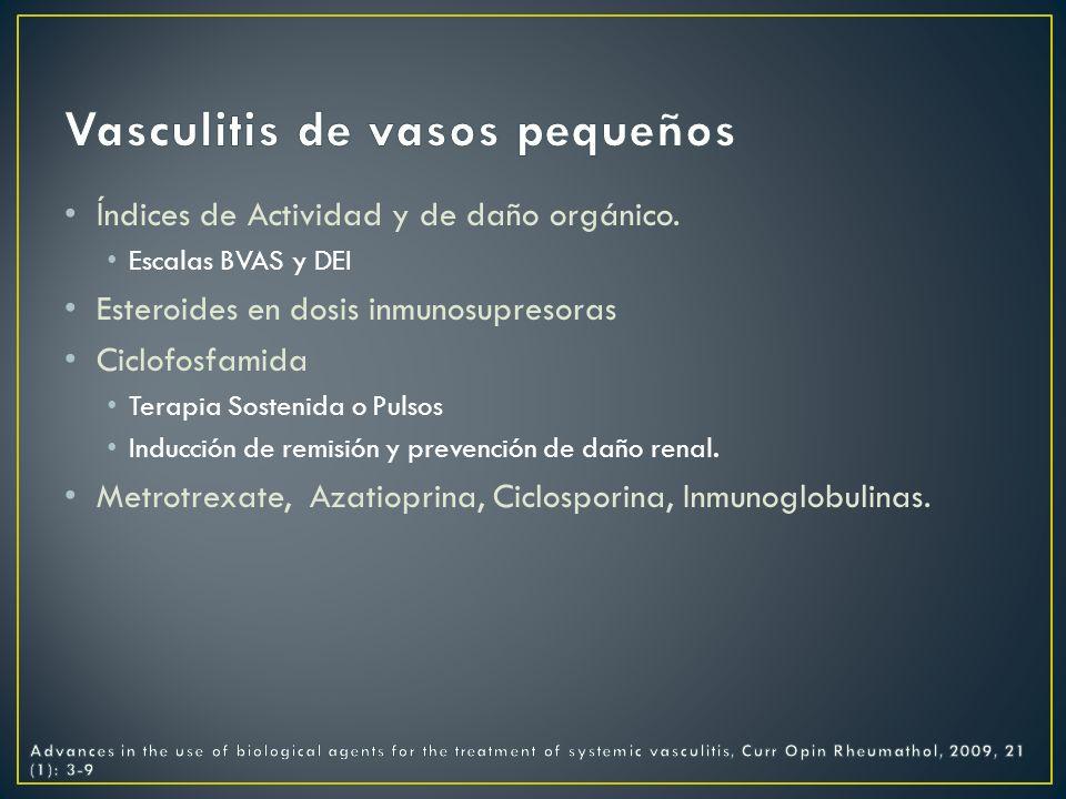 Vasculitis de vasos pequeños