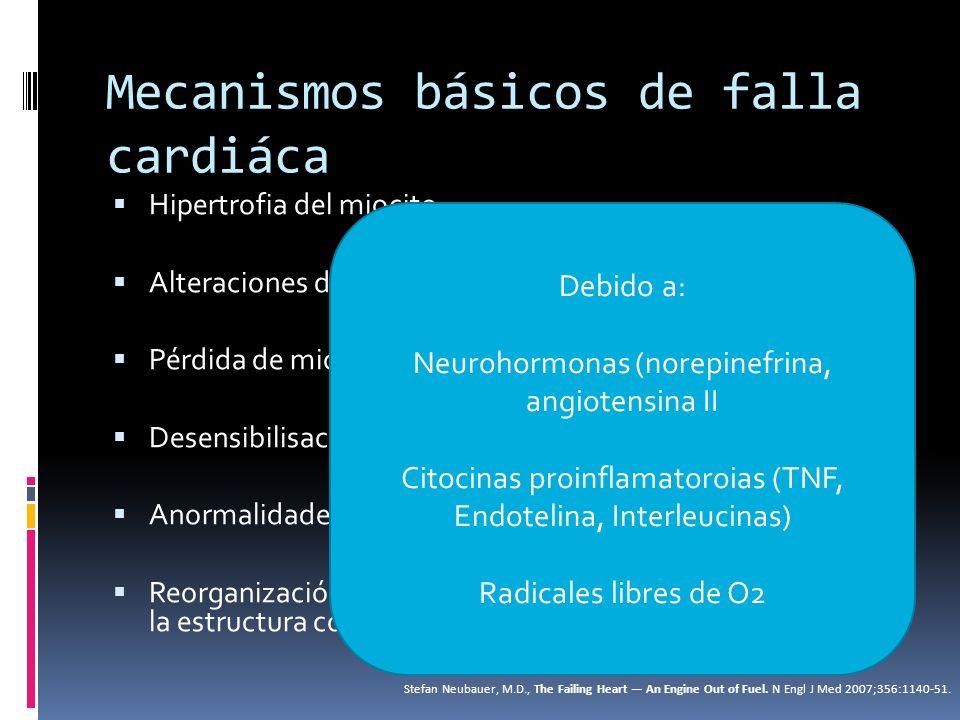 Mecanismos básicos de falla cardiáca