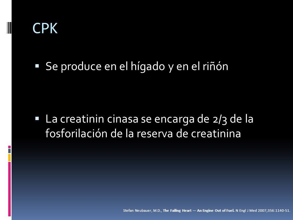 CPK Se produce en el hígado y en el riñón