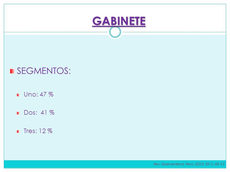 GABINETE SEGMENTOS: Uno: 47 % Dos: 41 % Tres: 12 %