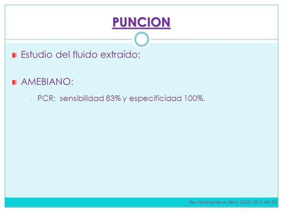 PUNCION Estudio del fluido extraído: AMEBIANO: