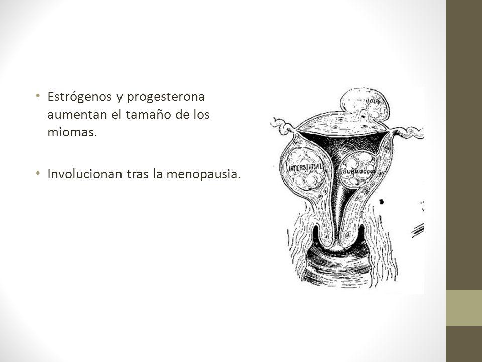 Estrógenos y progesterona aumentan el tamaño de los miomas.