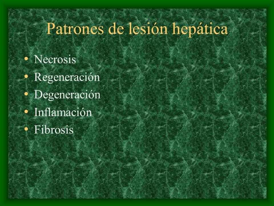 Patrones de lesión hepática