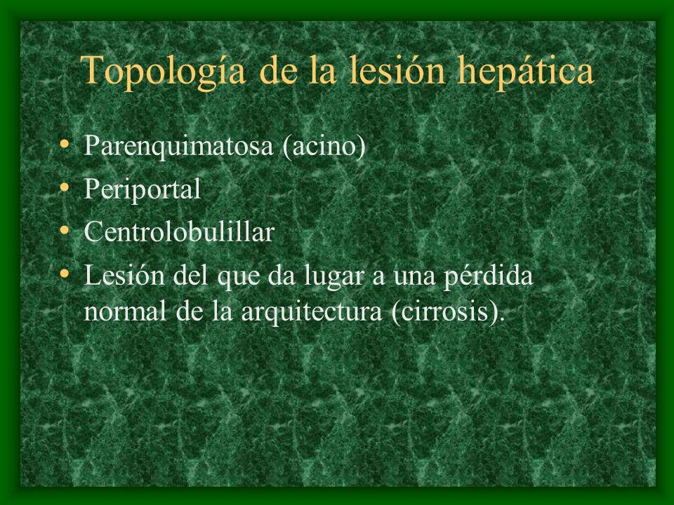 Topología de la lesión hepática