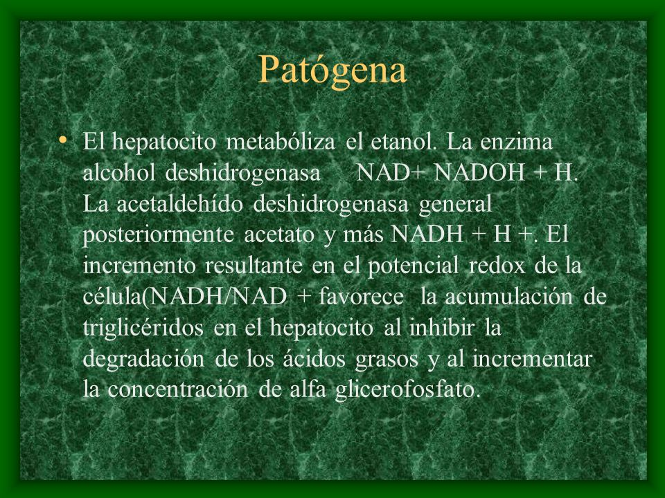 Patógena