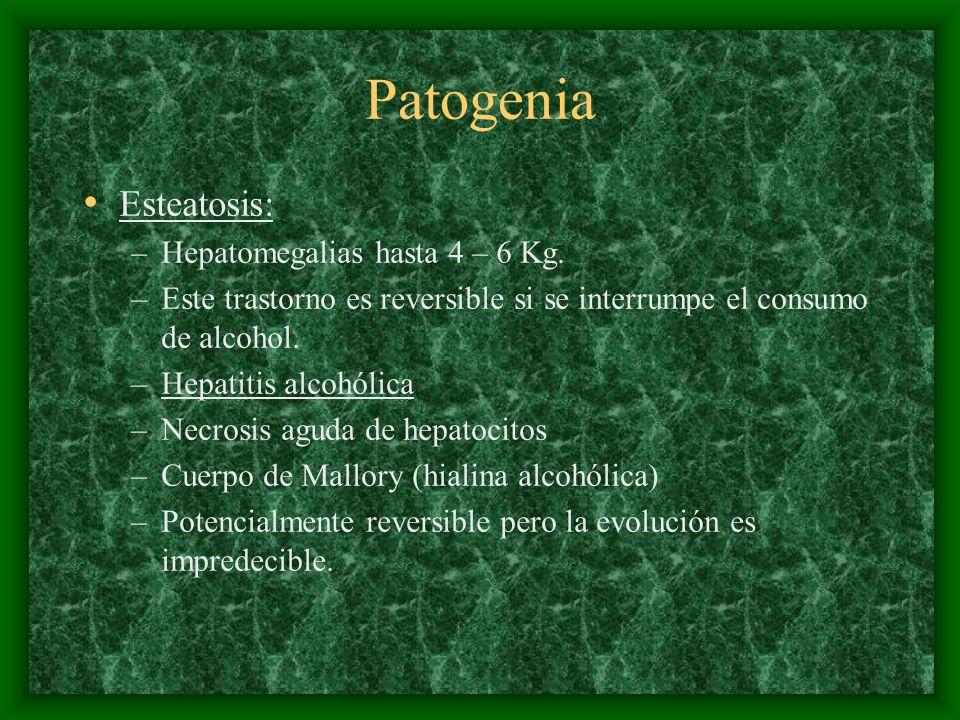 Patogenia Esteatosis: Hepatomegalias hasta 4 – 6 Kg.