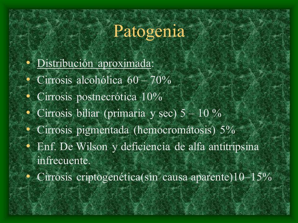 Patogenia Distribución aproximada: Cirrosis alcohólica 60 – 70%