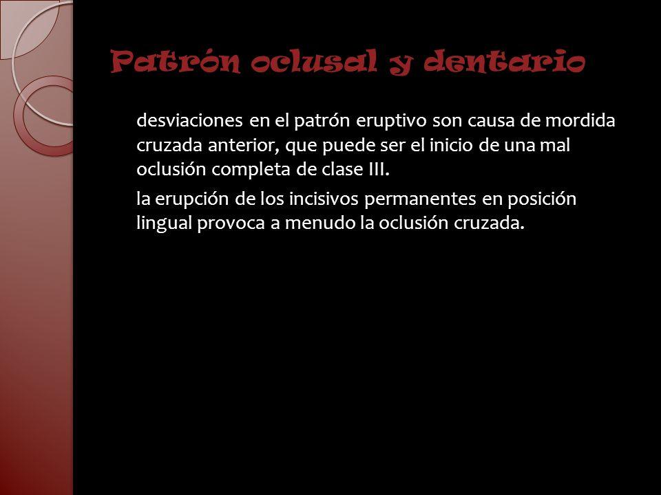 Patrón oclusal y dentario