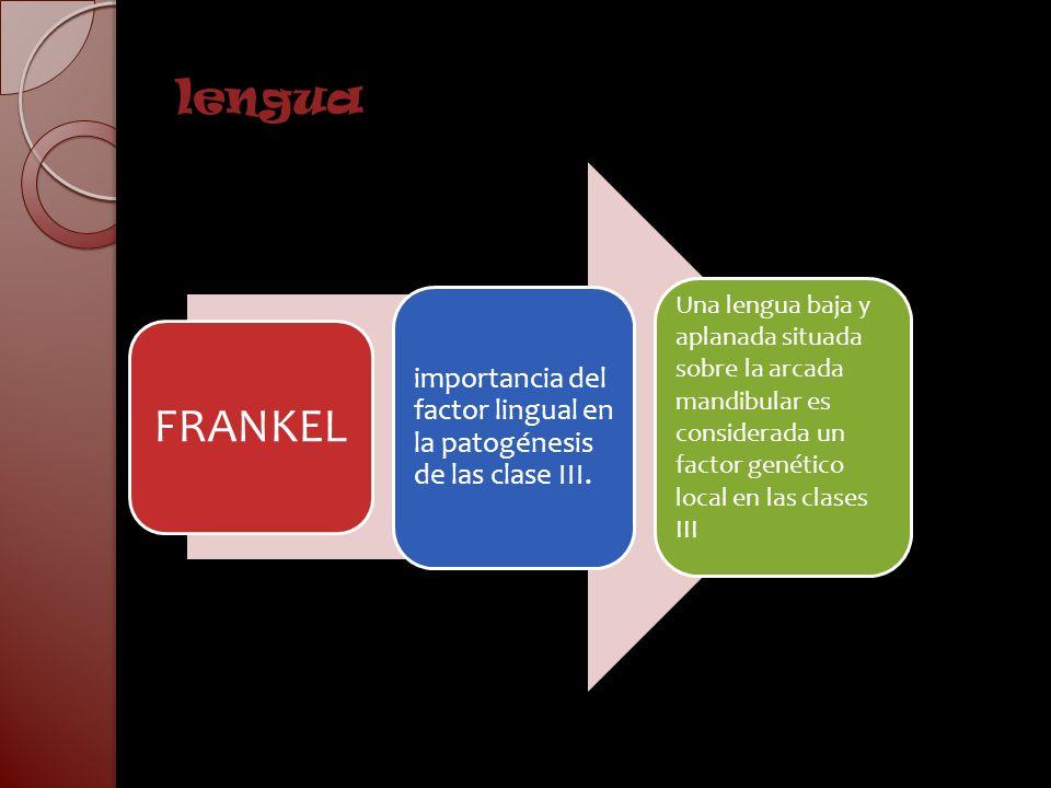 lengua FRANKEL. importancia del factor lingual en la patogénesis de las clase III.