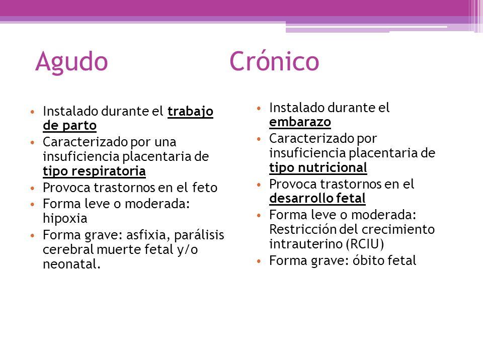 Agudo Crónico Instalado durante el embarazo