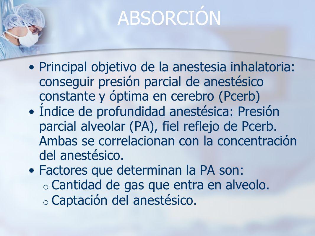 ABSORCIÓN Principal objetivo de la anestesia inhalatoria: conseguir presión parcial de anestésico constante y óptima en cerebro (Pcerb)