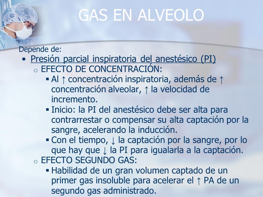 GAS EN ALVEOLO Presión parcial inspiratoria del anestésico (PI)
