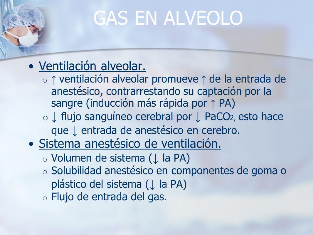 GAS EN ALVEOLO Ventilación alveolar.