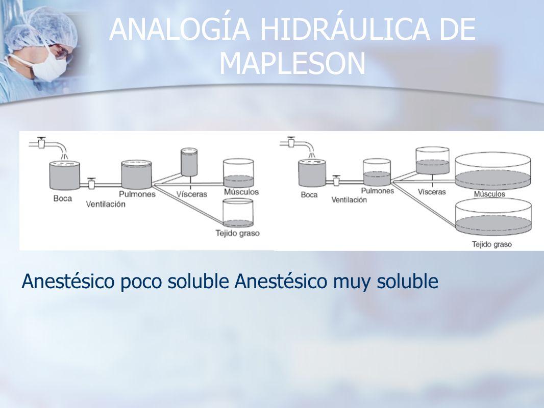 ANALOGÍA HIDRÁULICA DE MAPLESON