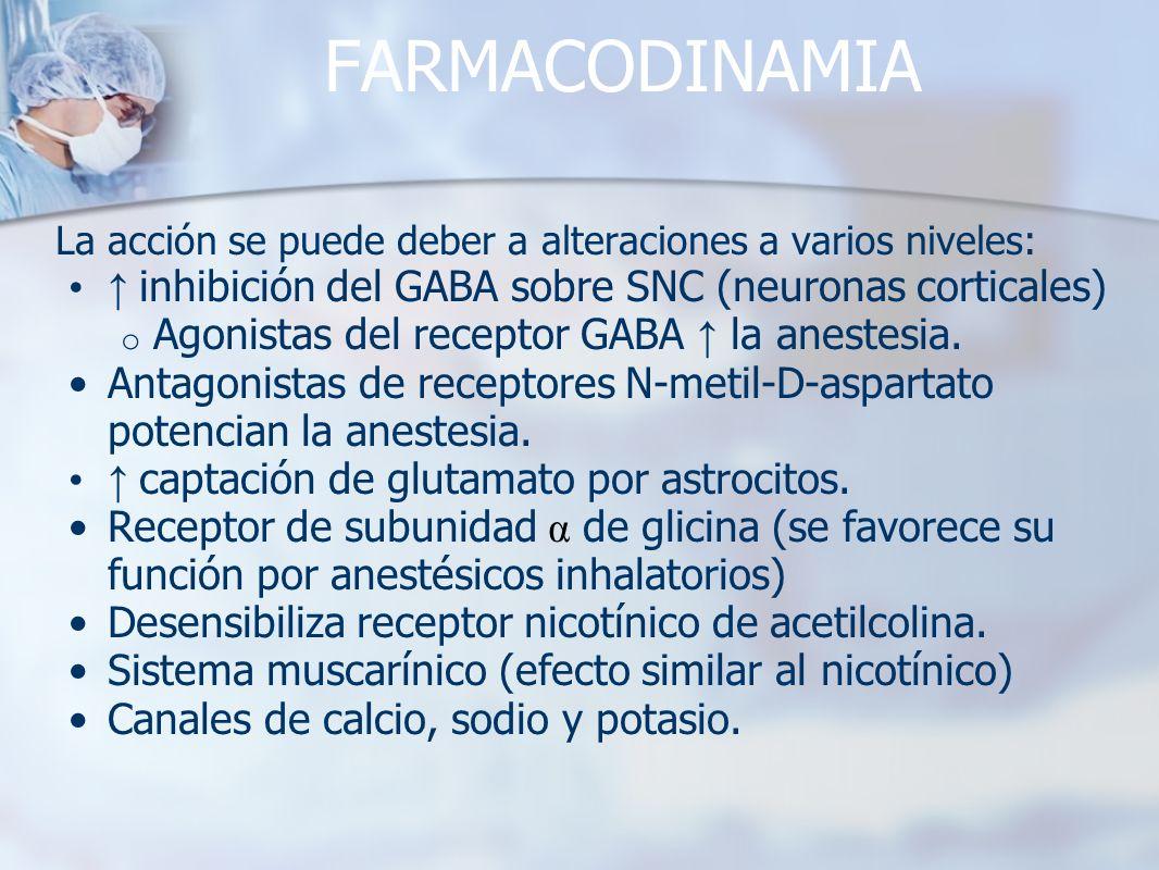 FARMACODINAMIA ↑ inhibición del GABA sobre SNC (neuronas corticales)