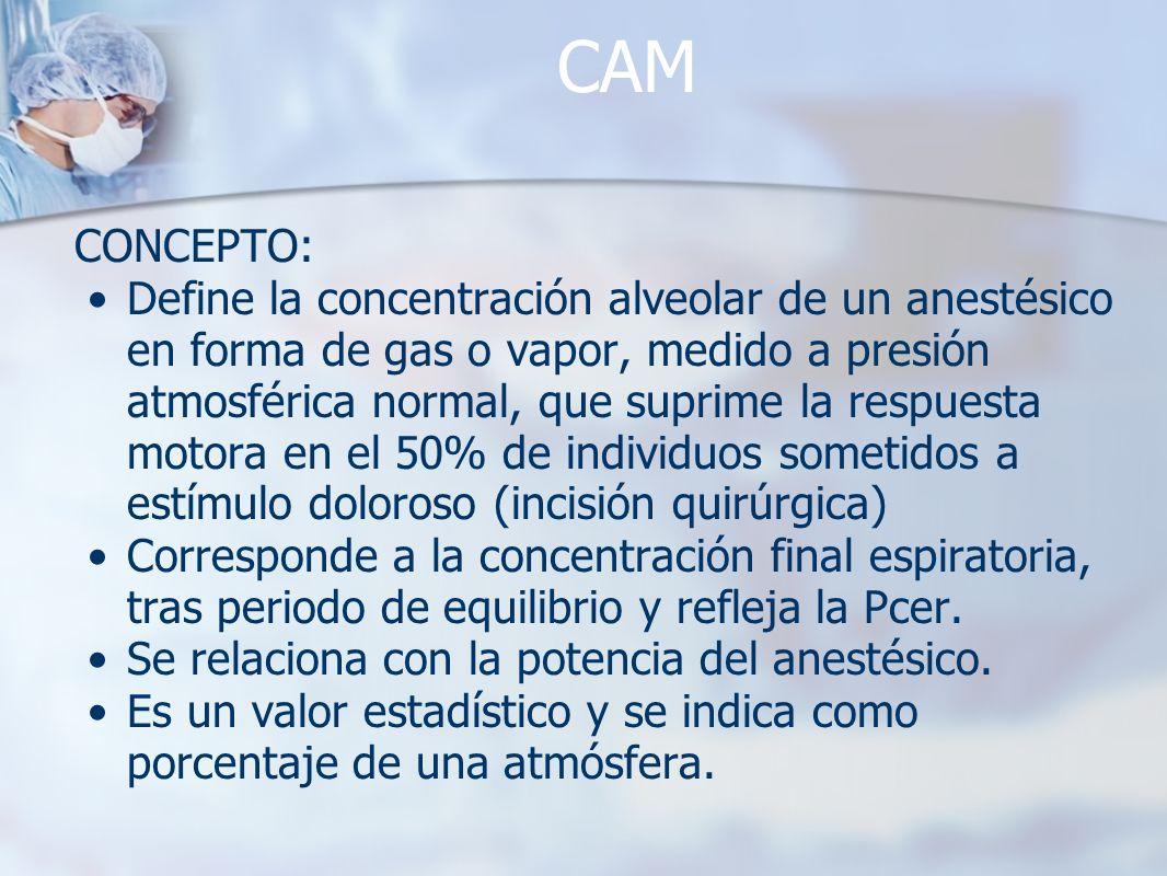 CAM CONCEPTO: