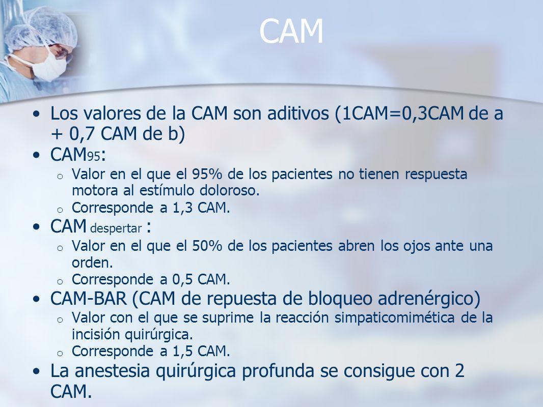 CAM Los valores de la CAM son aditivos (1CAM=0,3CAM de a + 0,7 CAM de b) CAM95:
