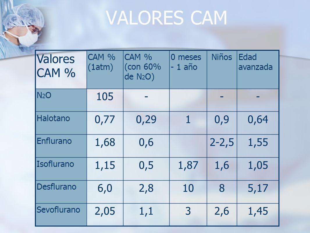 VALORES CAM Valores CAM % 105 - - - 0,77 0,29 1 0,9 0,64 1,68 0,6