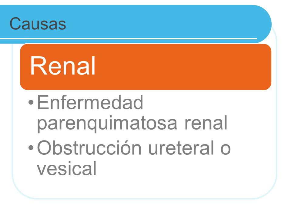 Causas Renal. Enfermedad parenquimatosa renal. Obstrucción ureteral o vesical.