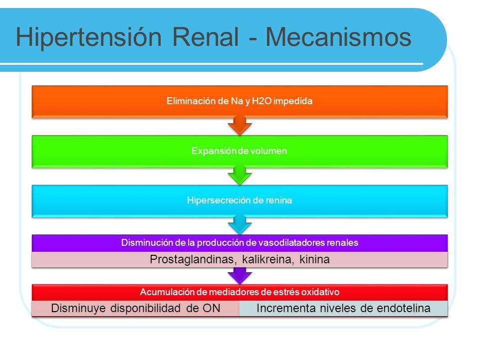 Hipertensión Renal - Mecanismos
