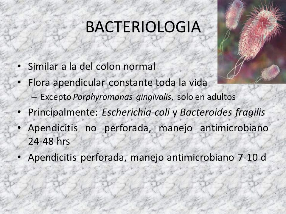BACTERIOLOGIA Similar a la del colon normal