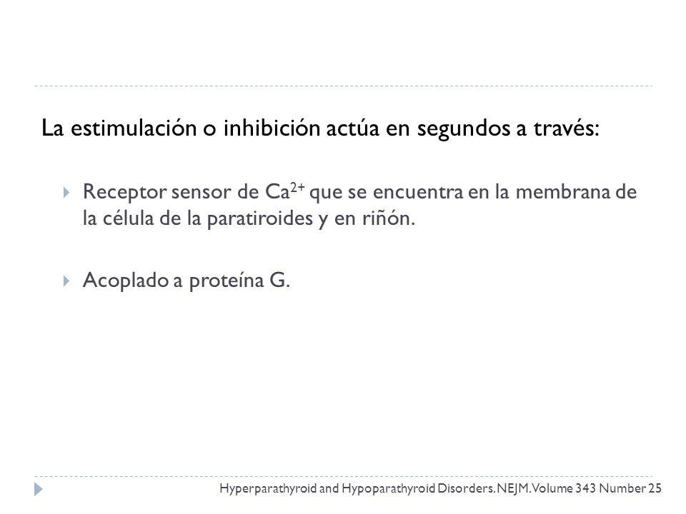 La estimulación o inhibición actúa en segundos a través: