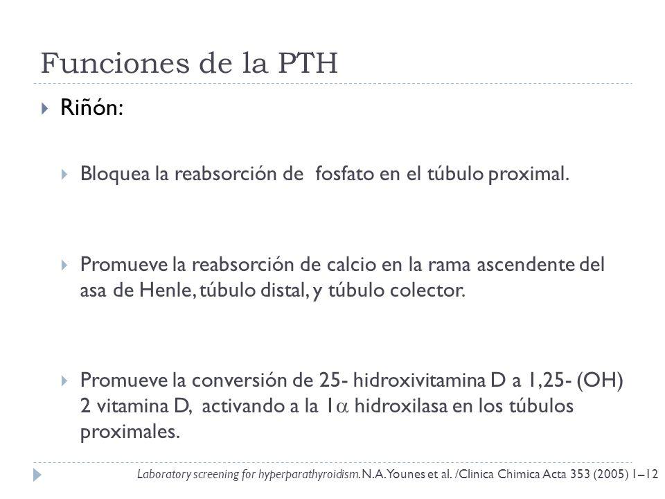 Funciones de la PTH Riñón: