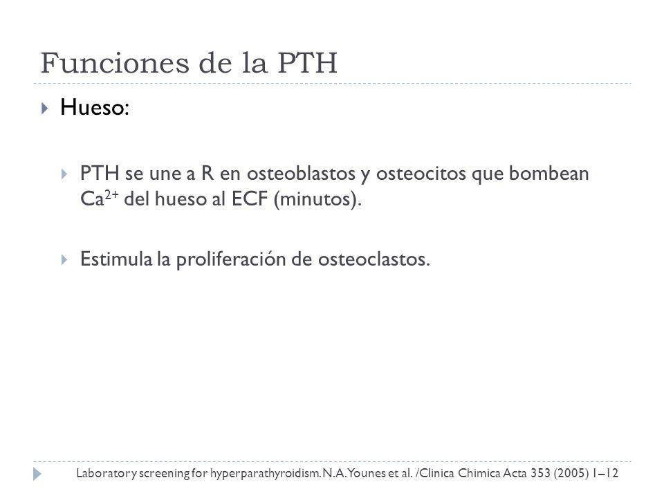 Funciones de la PTH Hueso: