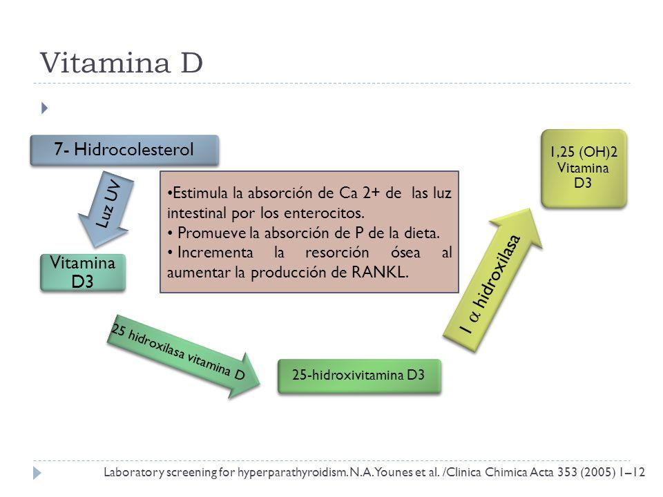 Vitamina D 7- Hidrocolesterol Vitamina D3