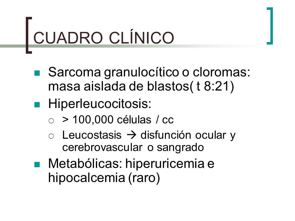 CUADRO CLÍNICO Sarcoma granulocítico o cloromas: masa aislada de blastos( t 8:21) Hiperleucocitosis:
