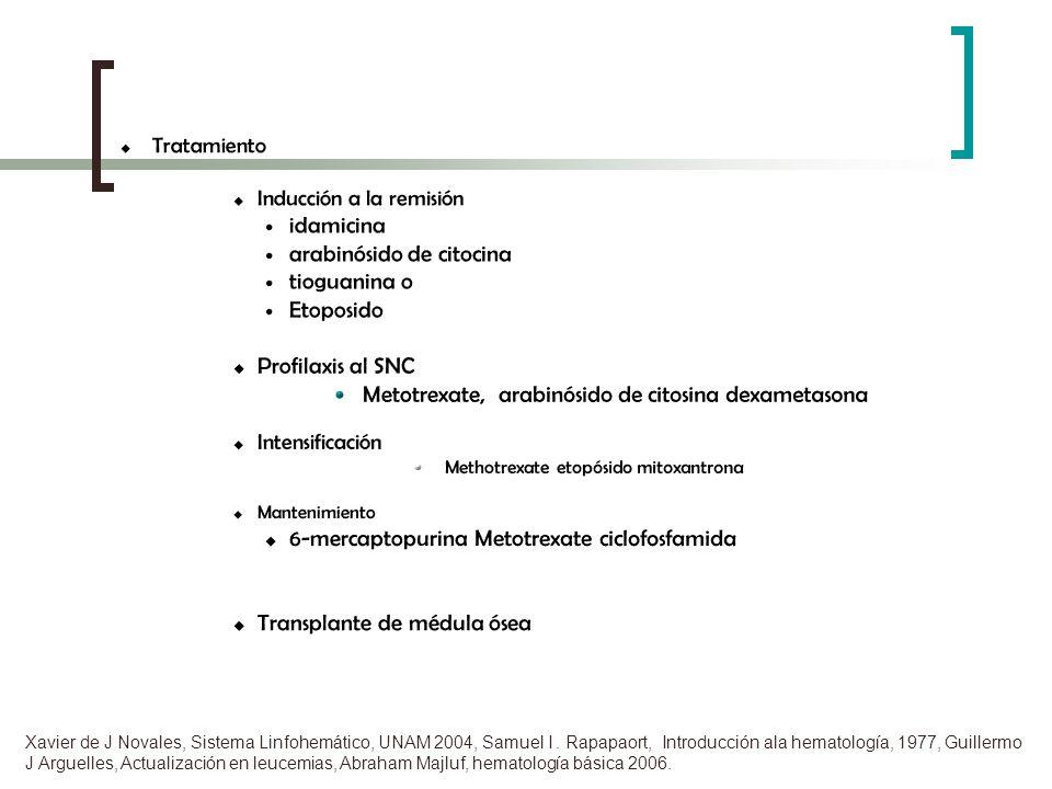 arabinósido de citocina tioguanina o Etoposido Profilaxis al SNC