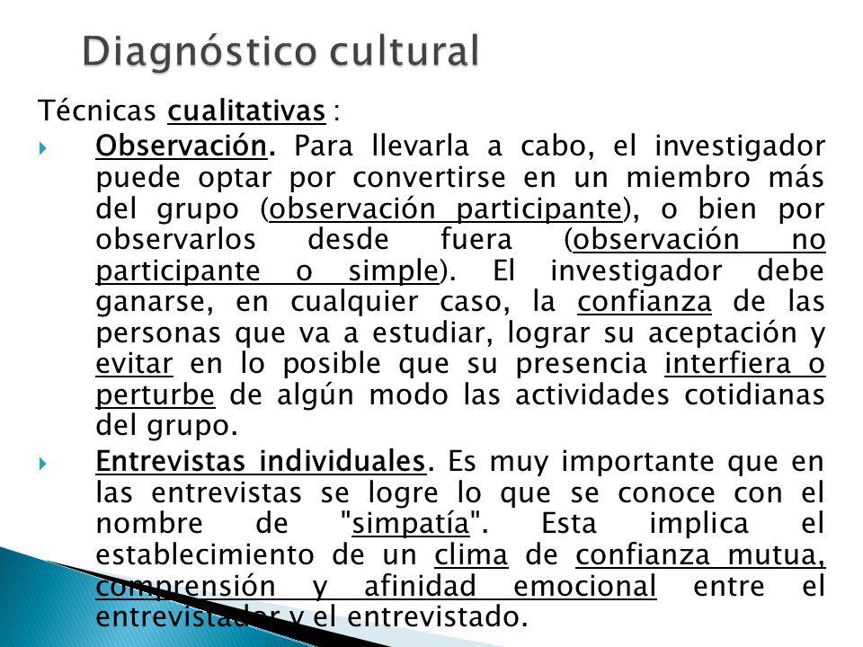 Diagnóstico cultural Técnicas cualitativas :
