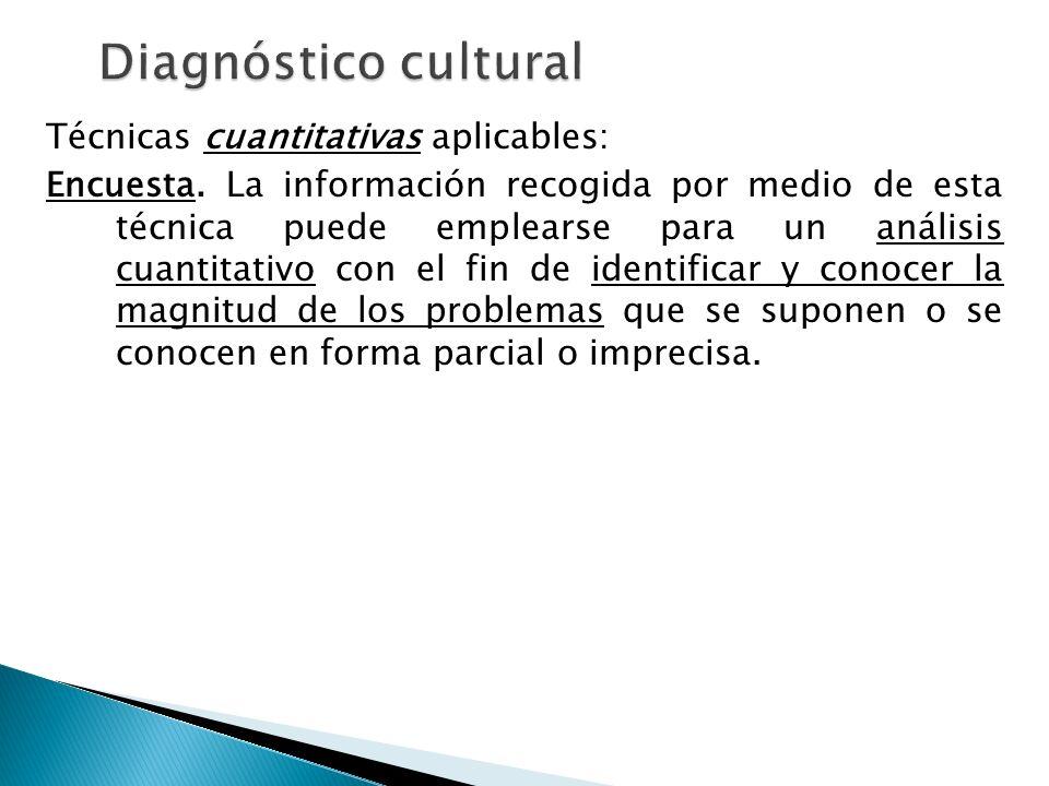 Diagnóstico cultural