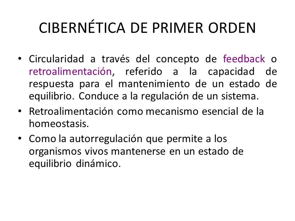 CIBERNÉTICA DE PRIMER ORDEN